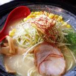 タウランガで鶏白湯ラーメンが食べられるのは【CHIDORI】だけ!